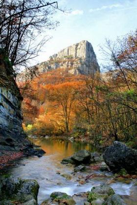 Прогулка по Крымскому лесу